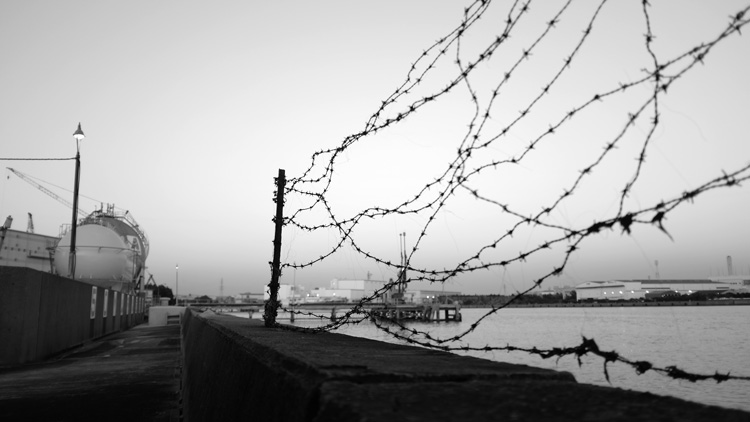 IND002 barded-wire_DSCF4297b